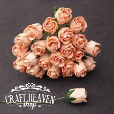 Peach Hip Rosebuds - 10mm