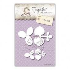 Orchid - Magnolia