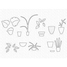 Houseplants Die-namics - My Favorite Things