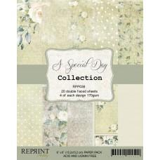 Reprint - A Special Day Collection - 6x6 Inch Paper Pack