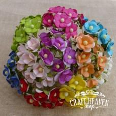 Mixed Colour Mulberry Paper Sweetheart Blossoms - 15mm