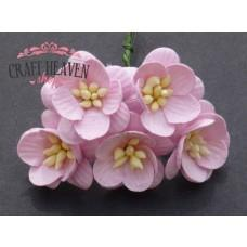 Baby Pink Mulberry Paper Cherry Blossoms - 25mm
