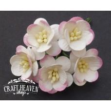 2-Tone Pink/Ivory Mulberry Paper Cherry Blossoms - 25mm