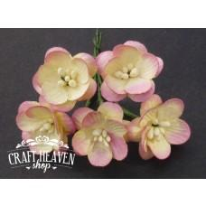 2-Tone Champagne Pink Mulberry Paper Cherry Blossoms - 25mm