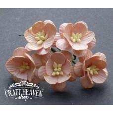Peach Mulberry Paper Cherry Blossoms - 25mm