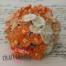 Mixed White/Orange Cosmos Daisy Stem Flowers - 25mm