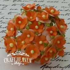 2-Tone Orange Sweetheart Blossoms - 15mm