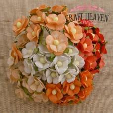 Mixed Orange & White Sweetheart Blossoms - 15mm